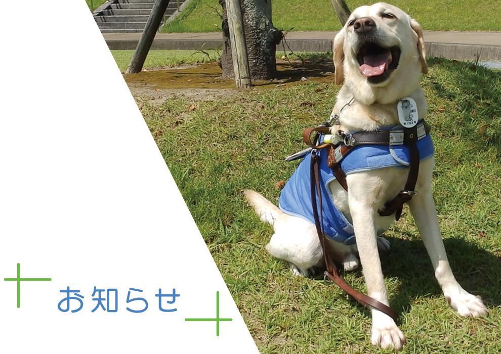 宮崎市視覚障害者福祉会メインイメージ